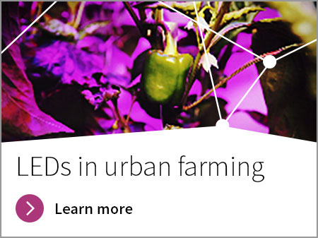 LEDs, urban farming