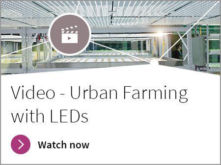 video, banner, urban farming