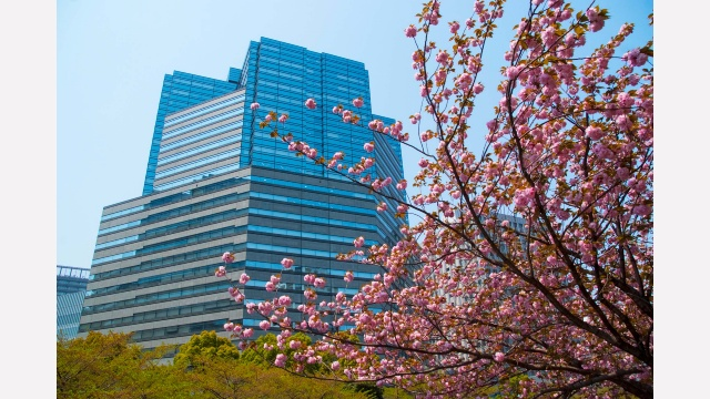Our Tokyo Office is located at 21st Floor in Gate City Osaki.