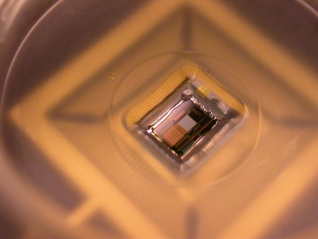 Microscopic zoom on the Neuro-Chip makes visible the sensor grid of 1 millimeter x 1 millimeter and the circuitry above which enables to record, amplify and process the more than 32 million information bytes presented by the 16,384 sensors on the grid every second.    Press Photo: Infineon Technologies, Max Planck  Institute