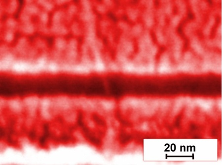 This picture of a high-resolution scanning electron microscope shows the source and drain contacts and the individual carbon nanotube forming the world's smallest nanotube transistor with a channel of just 18nm.