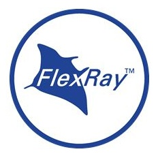 FlexRay Icon