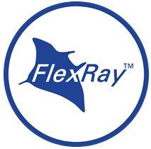 Automotive FlexRay™ Transceive...